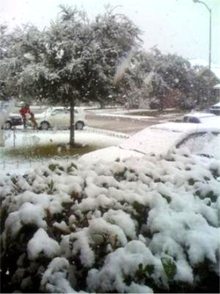 Houston, Texas' Earliest Snow